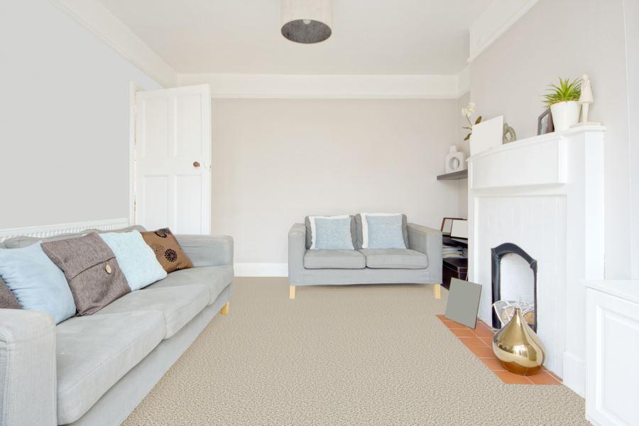 Room Scene of Cherry Creek - Carpet by Engineered Floors